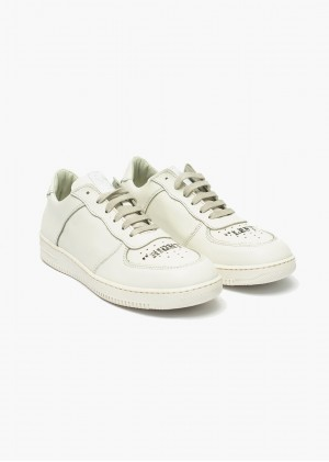 Sneakers Donna Startup 001
